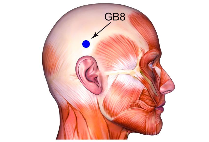 Ponto de acupuntura shuaigu GB8