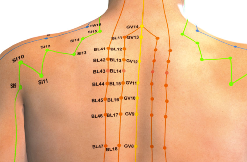Acupuncture Point That Reduces Fevers Confirmed