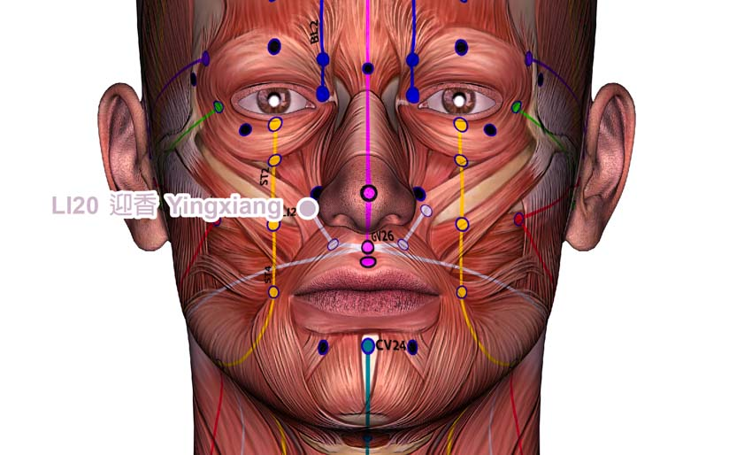 sleep apnea acupuncture