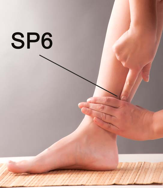 Location of SP6 (Sanyinjiao) on female model