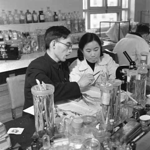 Dr. Tu Youyou