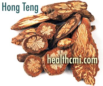 This photo includes the herb hong teng, often used in TCM herbal medicine.