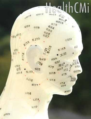 Scalp and head acupuncture points are located here.