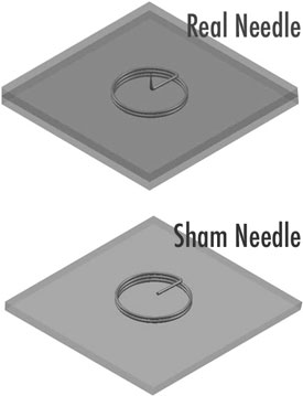Sham Ear Needle