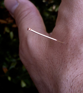 Gold acupuncture needles were used in this MRI study of pain.