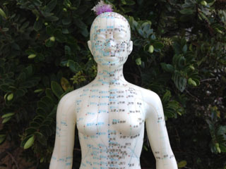 Acupuncture points are depicted in this photo.