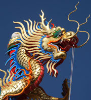 An image of a dragon is depicted here.