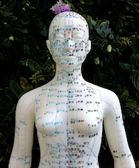 Arizona faces an acupuncture crisis in public safety.