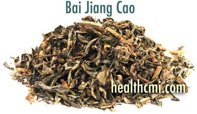 Bai Jiang Cao is an important herb for PID treatments and herbal formulas.