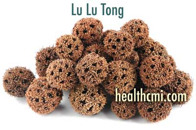 Lu Lu Tong is an important herb for the TCM treatment of PID.