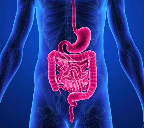 Hiccups, Digestion and Stomach Pain